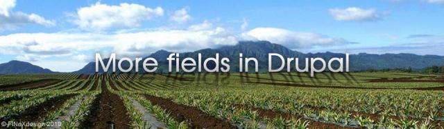 Estendere i nodi di Drupal, i campi composti