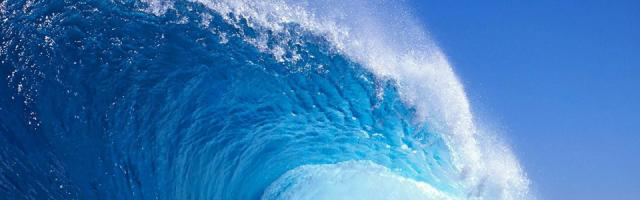 Google Wave non sarà più sviluppato