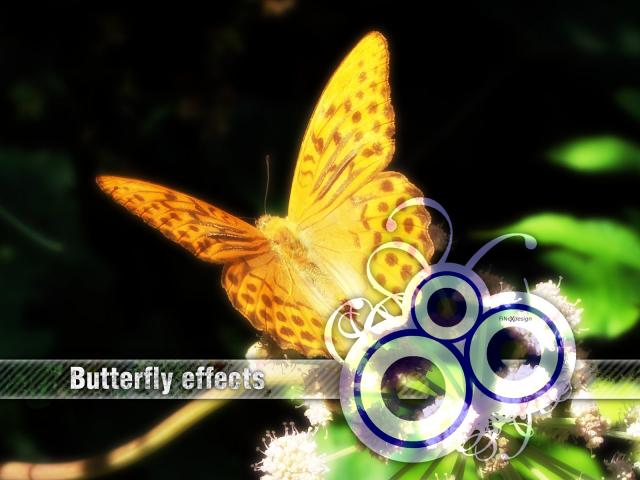 Butterfly Effect Wallpaper