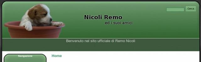 Sito web: Nicoli Remo