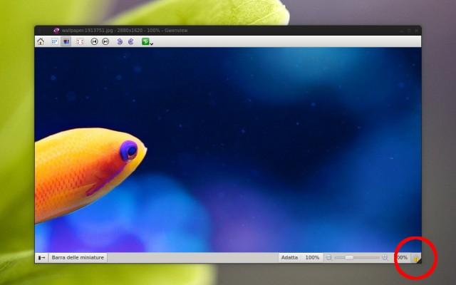 Con KDE 4.9 torna il lock-zoom su gwenview!