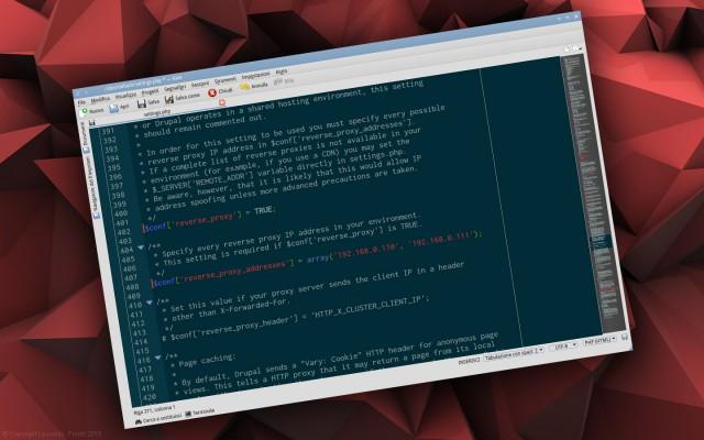 Siti Drupal e Proxy: come ottenere l'IP dei visitatori