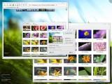 KDE Imageshack e Pastebin